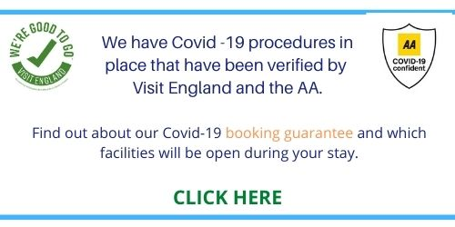 Covid 19 updates link